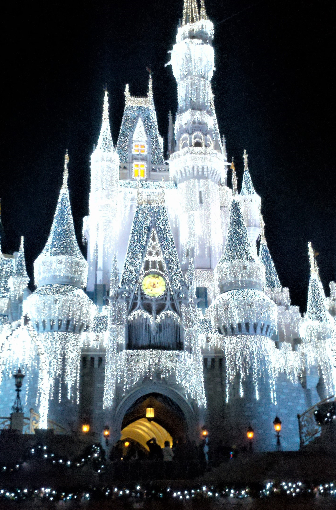 Teri Aitchison enjoying Cinderella's Castle dressed in Holiday finery.