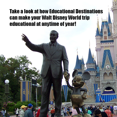 Be a part of the Disney experience.